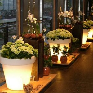 Light flower pots